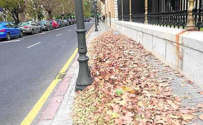 Las hojas se acumulan junto a los cuarteles