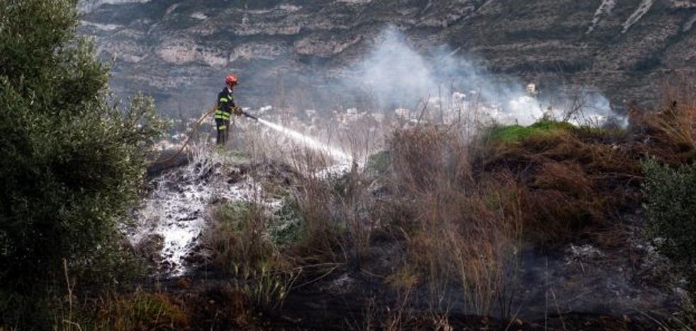 Las chispas de un cable de media tensión causa el incendio de un cañar en Dénia