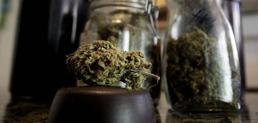 Los clubes llevan a la justicia europea la regulación del cannabis en España