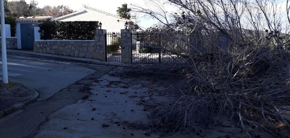 El fuerte viento obliga a posponer una fiesta infantil navideña en Xàbia y deja en puerto a buena parte de la flota pesquera de Dénia y Calp