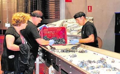 Tres décadas de brindis con vinos alicantinos