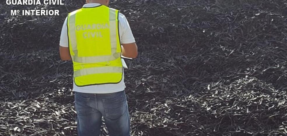 Detenidos por robar 47 toneladas de algarrobas