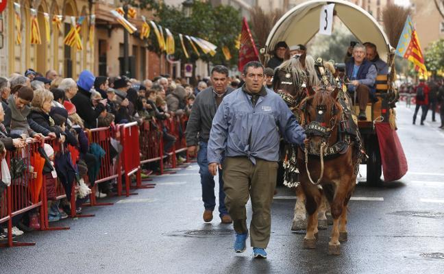 Valencia se prepara para la bendición de animales en la fiestas de San Antonio Abad