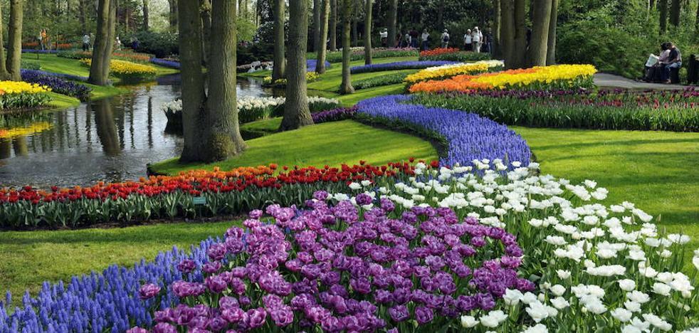 Los 10 jardines más curiosos del mundo