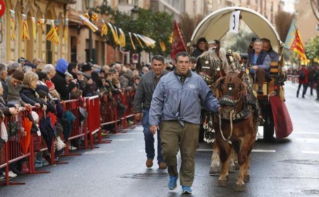 ¿Por qué se bendicen animales el día de San Antonio Abad?
