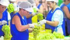 Alimentos valencianos avalados por la denominación de origen
