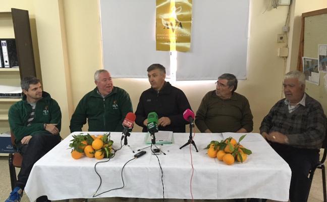 Agricultores de Alzira piden la dimisión del edil Carreres por el «abandono» del sector