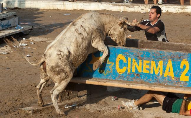 Rafa Alcaide: Catedrático en bous al carrer