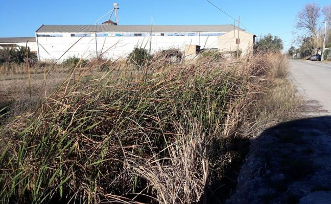 Vecinos de Font d'En Corts y La Punta denuncian la suciedad de las acequias