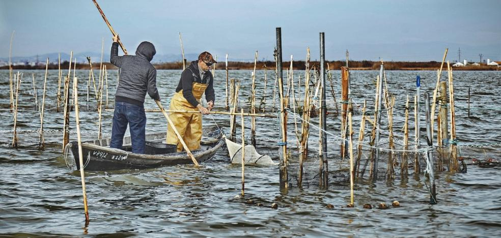 Éxito de la semana de la pesca artesanal