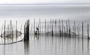 El Consell aprueba las bases para el desagüe del lago de la Albufera