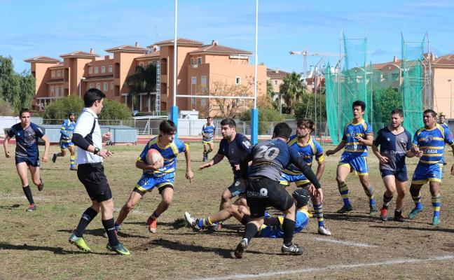 El Dénia Rugby Club lidera la 2ª Territorial al ganar al Albacete