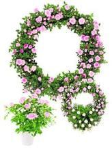 Coronas Eco Friendly, una propuesta sostenible
