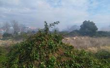 Un incendio afecta al Parque Natural del Turia