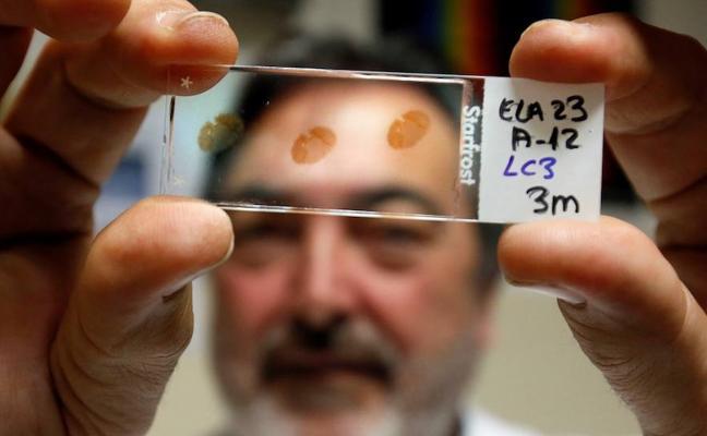 Investigadores valencianos están a medio millón de euros de un ensayo en humanos que frene la ELA