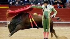 Roca Rey torea en Valencia: el cartel de hoy de la Feria de Fallas