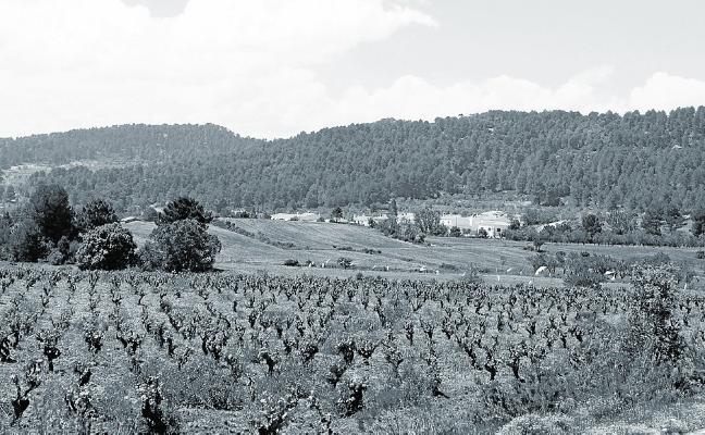 Tiempo de Toscana
