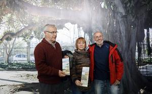 Cinco rutas para descubrir la ciudad de Valencia a través de sus árboles más emblemáticos
