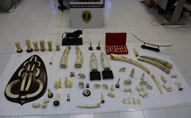 Confiscan 94 piezas de marfil y una escultura