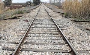 Fomento impulsa el proyecto de las autopistas ferroviarias con Francia