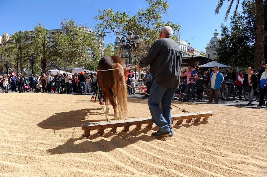 Tastarròs 2018 en la plaza del Ayuntamiento de Valencia