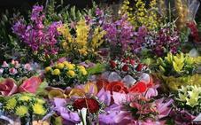 El mercado flotante de flores llega a La Marina de Valencia