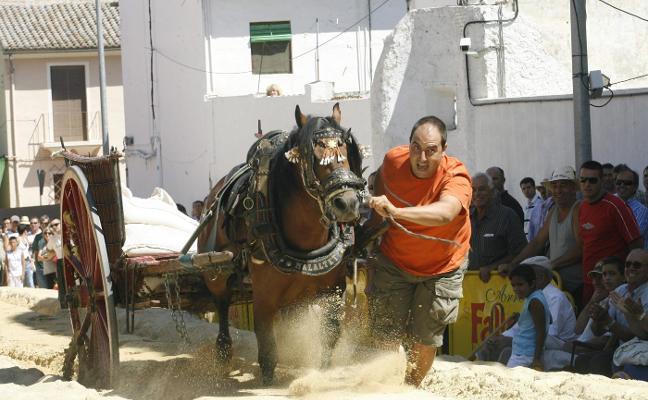 Xàtiva incluye sanciones de 3.000 euros en su primera ordenanza para la 'Fira del Bestiar'