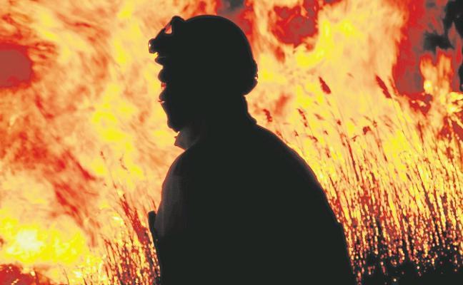 Los incendios provocan el peor inicio de año en los bosques de la última década