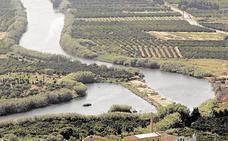 Los pantanos del Júcar suman 47,5 hectómetros en una semana
