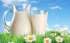 Beber dos vasos de leche al día se asocia con un menor riesgo de desarrollar cáncer