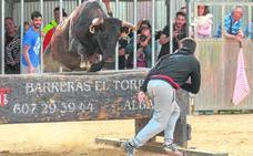 'Rondallera', la vaca que consolida a Miguel Parejo