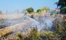Un incendio calcina 1.000 metros cuadrados de maleza al inicio de la Vía Verde de Dénia