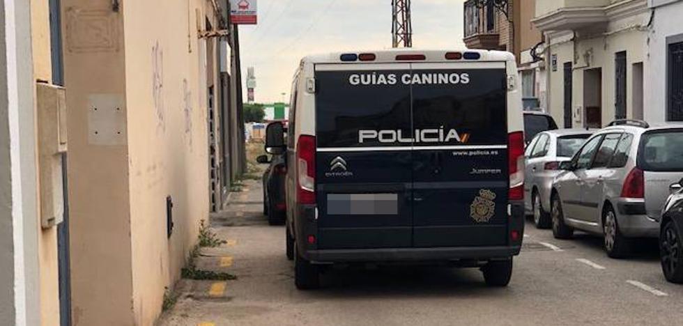 La policía desmantela una plantación de marihuana en Benimàmet