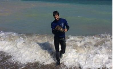 Rescate de una tortuga joven en Almenara