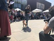 Desfile de perros en el Bioparc de Valencia