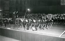 50 aniversario de la Ronda a la Virgen de los Desamparados