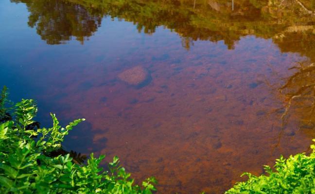 Aielo de Malferit denuncia el mal estado del agua del Clariano a su paso por el municipio