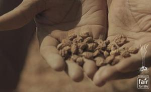 Tigernuts Traders, primera agroalimentaria de la Comunitat con sello 'Fair For Life'