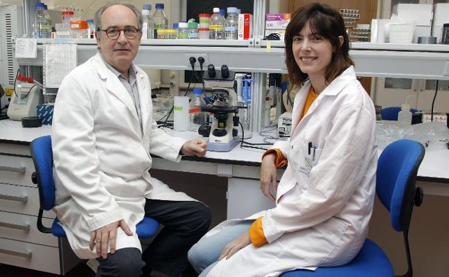 Científicos de la UA lideran un proyecto para detectar antes el párkinson