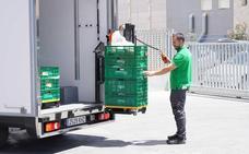 El reparto de congelados y refrigerados en la compra online de Mercadona