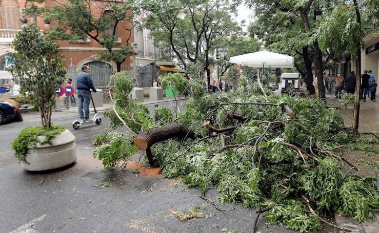 Los efectos de las lluvias torrenciales que azotan la Comunitat