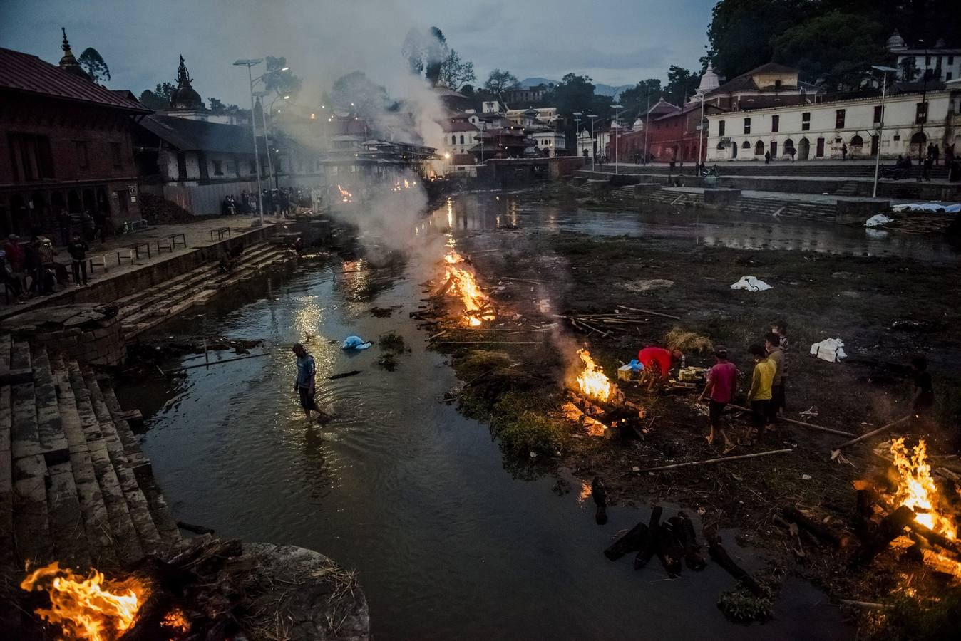 World Press Photo: las mejores fotos de prensa de 2015