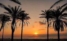 Cómo ir a la playa de la Patacona de Valencia