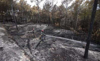 Quince de los 22 parques de la Comunitat Valenciana no tienen plan de prevención de incendios