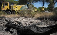 Extinguido tras más de diez días el incendio del entorno de Doñana