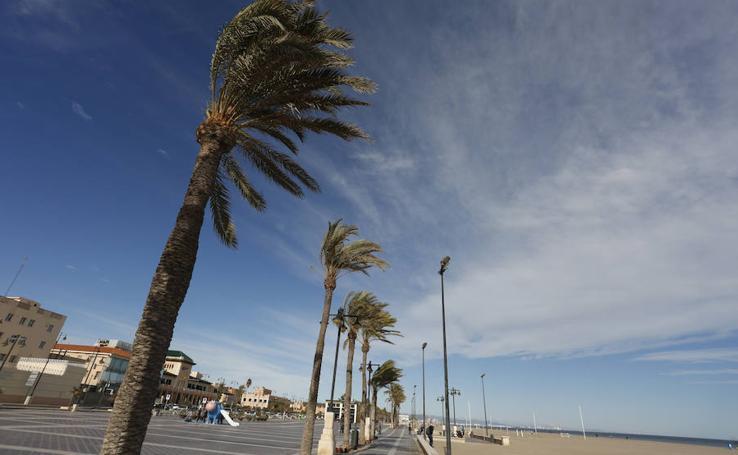 Fotos del temporal de viento en Valencia