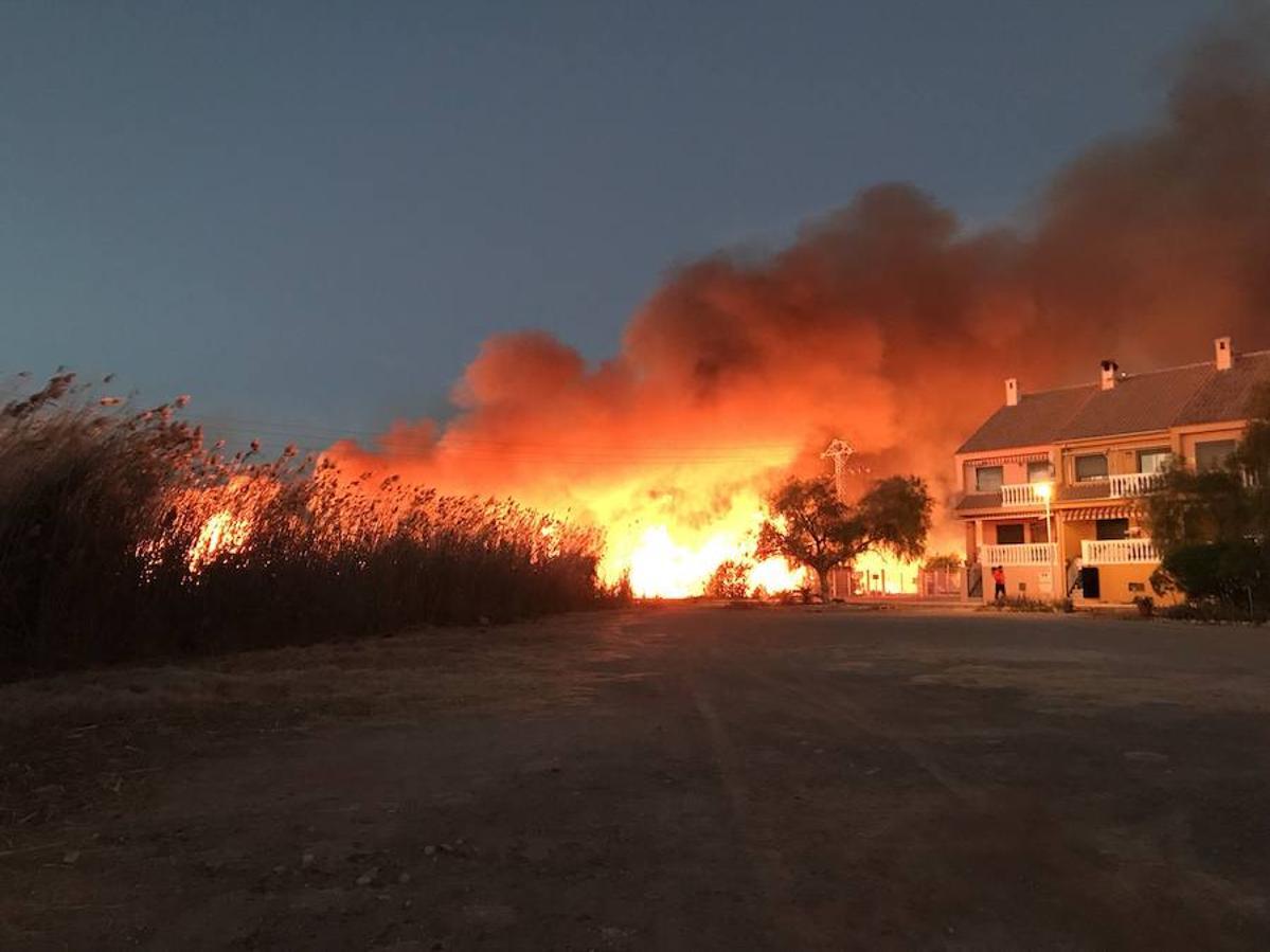 Fotos del incendio en la Marjal dels Moros en Sagunto