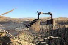 Agricultura prohíbe las quemas a menos de 500 metros de terreno forestal
