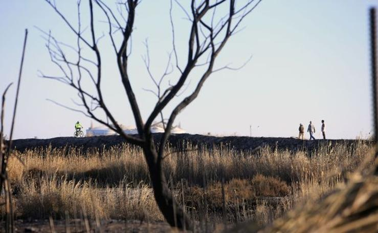 Fotos de la Marjal del Moro tras el incendio