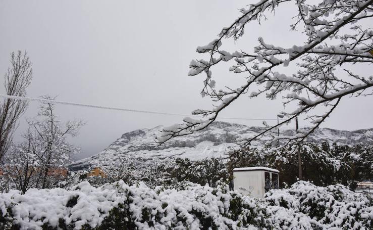 Fotos del aniversario de la nevada en Dénia y Xàbia